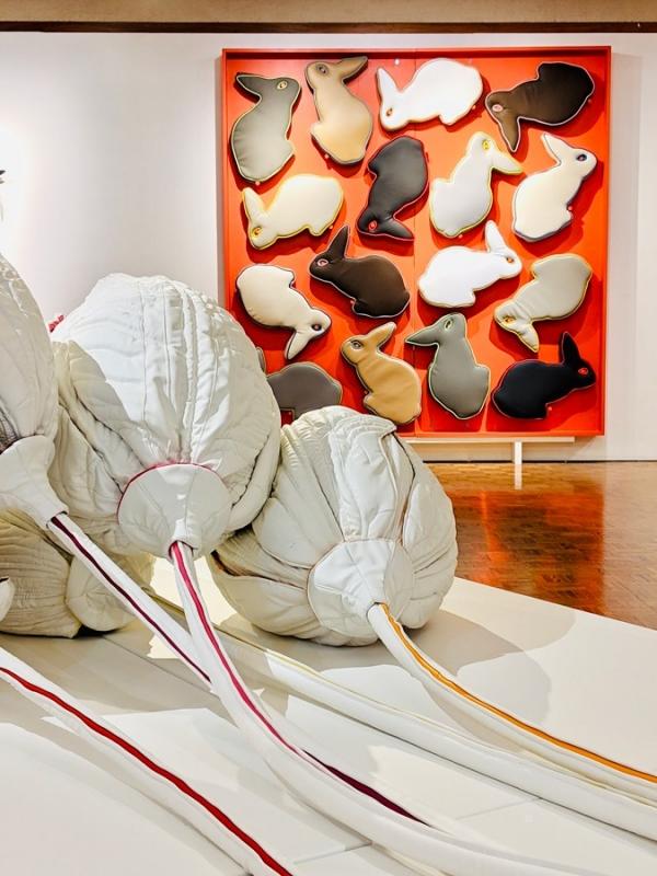 Winter's Spring|The Miller Art Museum by Lesie Iwai艺术装置